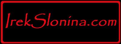 IREKSLONINA.COM